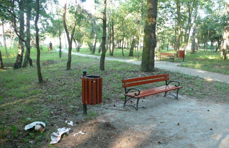 Smieci - Park Lasockiego